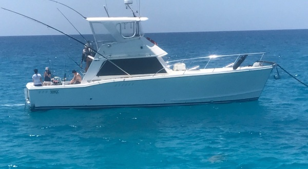 Charter Boats Cairns - 43ft Flybridge Cruise for Snorkel Tours