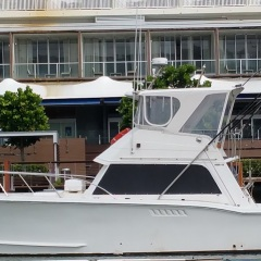 Charter Boats in Cairns - 43 FT Flybridge Cruiser