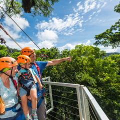 Checking Out the Views - Daintree Cape Tribulation Ziplining Tour