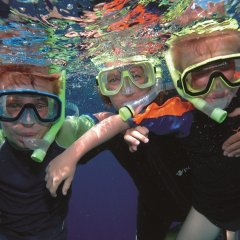 Children snorkel tours Great Barrier Reef