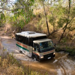 Chillagoe Caves four wheel drive tour from Cairns