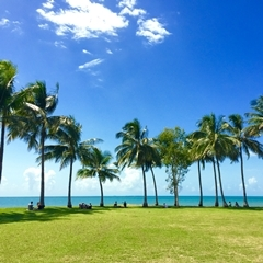 Christmas In Port Douglas Queensland Australia