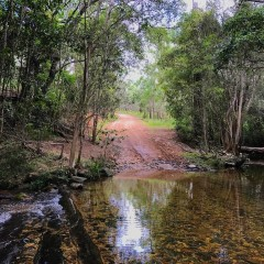 Clohesy River Atherton Tablelands
