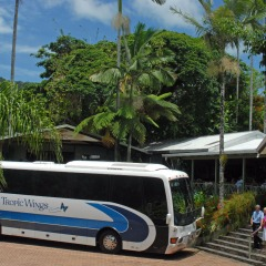 Coach Day Tour To Kuranda Rainforestation | Incl Return Transfers From Cairns Tropical North Queensland