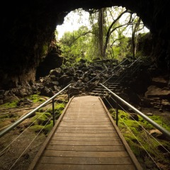 Collapsed Lava Tube at Undara National Park