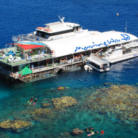 Combo Deal Great Barrier Reef & Kuranda | All Weather Pontoon | Activities For The Whole Family