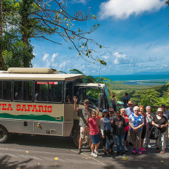 Comfortable 4WD Vehicle - Daintree Rainforest tour