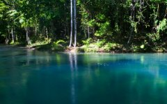Cooper Creek In The Daintree Rainforest | Tropical North Queensland