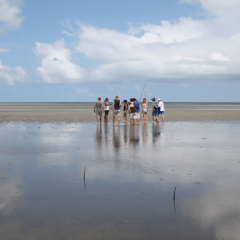 Cooya Beach | Part Of 1 Day Tour To Daintree Rainforest & Mossman Gorge