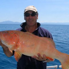 Coral Trout fishing from Port Douglas