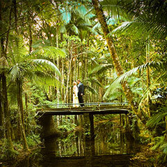 Couple on a bridge in the Daintree Rainforest