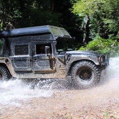 Cairns Hummer Tours in the Kuranda Rainforest
