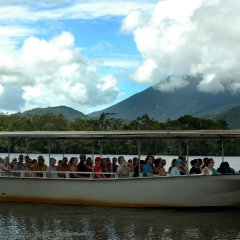 Cruise the mighty Daintree River hunting for the ferocious salt water crocodile