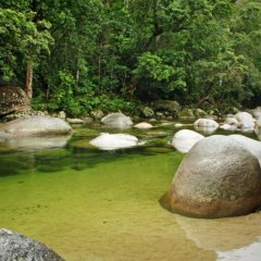 Mossman Gorge Near Port Douglas Half Day Tour