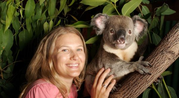 Cuddle A Koala | Rainforestation Nature Park | Kuranda Day Trip | Departs Cairns