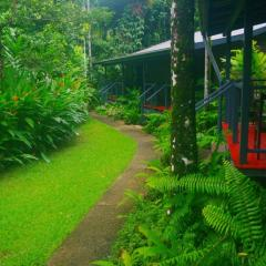 Daintree Accommodation Option Heritage Lodge | Overnight Stay In The Daintree