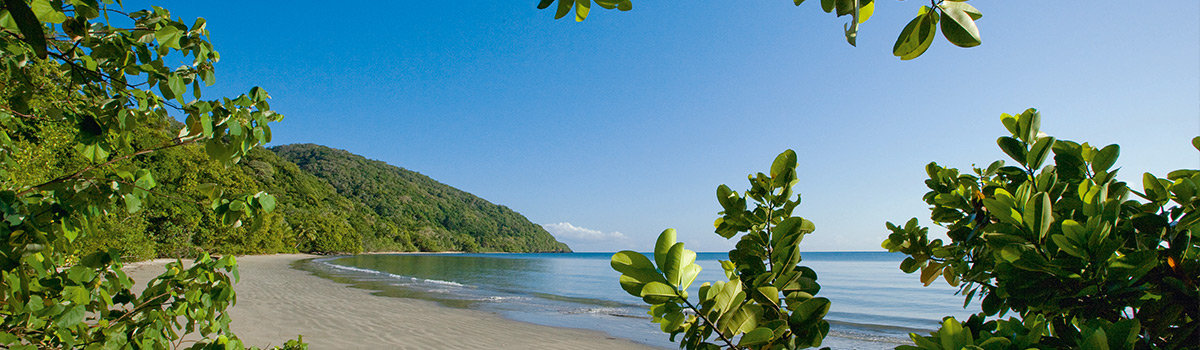 Daintree Travel Guide Main Shot
