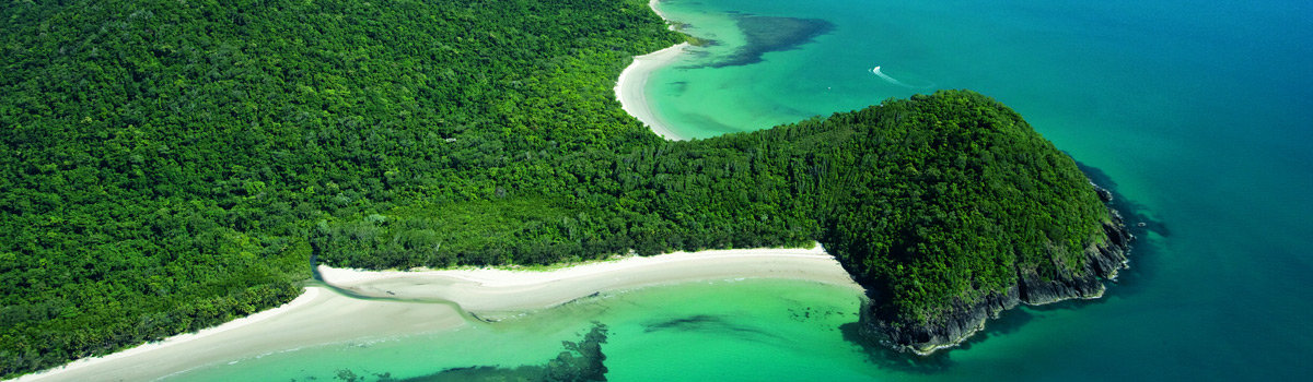 Daintree and Cape Tribulation Accommodation