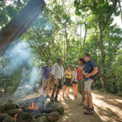 Daintree Attractions Pass | Mossman Gorge Dreamtime Walk