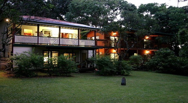 Daintree B&B Deluxe Accommodation | Cairns Birdwatching & Rainforest B&B