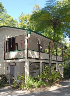 Daintree and Cape Tribulation B&B Accommodation