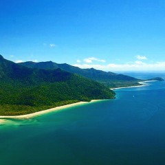 Daintree Coastline | 1 Day Tour Ex Cairns