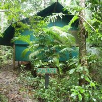 Daintree Crocodylus Village - Rainforest Accommodation nestled amongst world heritage Rainforest.