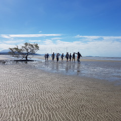 Daintree Dreaming Hunting along Cooya Beach