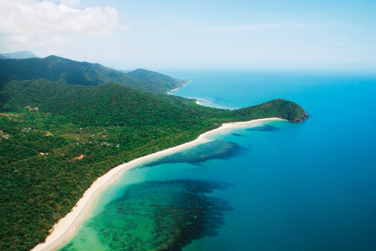 Aboriginal Tours Cape Tribulation