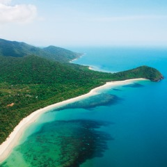 Daintree From The Air
