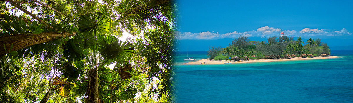 Daintree Rainforest & Great Barrier Reef Package Tour