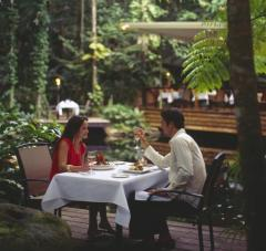 Daintree Rainforest Dining | Julaymba Restaurant At Daintree Eco Lodge and Spa