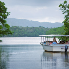 Daintree Rainforest River Cruise