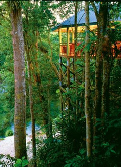Daintree & Cape Tribulation Resort Accommodation