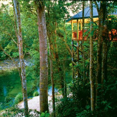& Cape Tribulation Resort Accommodation