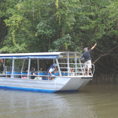 Daintree River Cruise - 7 Departures Daily