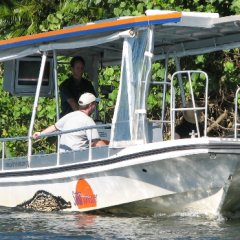 Daintree River Cruise With Your Personal Guide | Full Day Tour From Port Douglas
