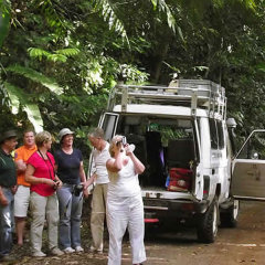 Day Tour For Small Group Up To 7 | Visit The World Heritage Rainforest | Cairns Tour