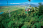 Day Trip Ex Port Douglas Includes Skyrail Rainforest Cableway