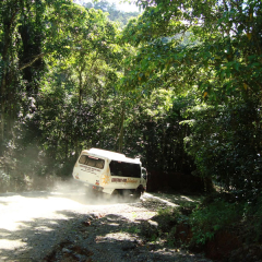 Day Trip To Cooktown & 4WD On The Bloomfield Track