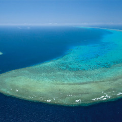 Deluxe 40 minute scenic Great Barrier Reef Helicopter Flights