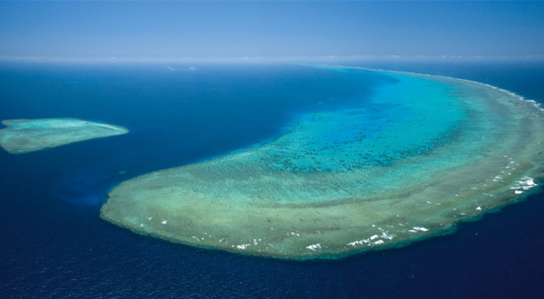 Great Barrier Reef Helicopter Flights from Cairns and Port Douglas