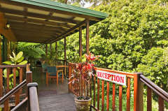 Deluxe Daintree B&B  Accommodation
