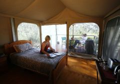 Deluxe Tented Safari Cabin - Jabiru Safari Lodge Cairns' Atherton Tablelands