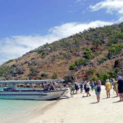Discover Lizard Island | Cairns Cruise Ship