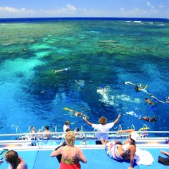 Great Barrier Reef Tour | Snorkel tours from Port Douglas on the Great Barrier Reef