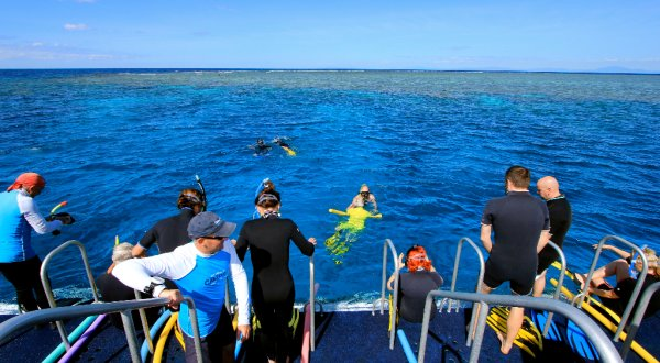 Dive & snorkel tours from Port Douglas Queensland Australia