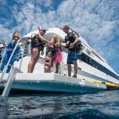 Divers getting ready to jump in to explore the Great Barrier Reef