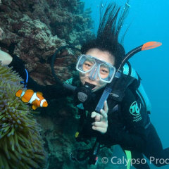 Diving Cairns | Great Barrier Reef Tour