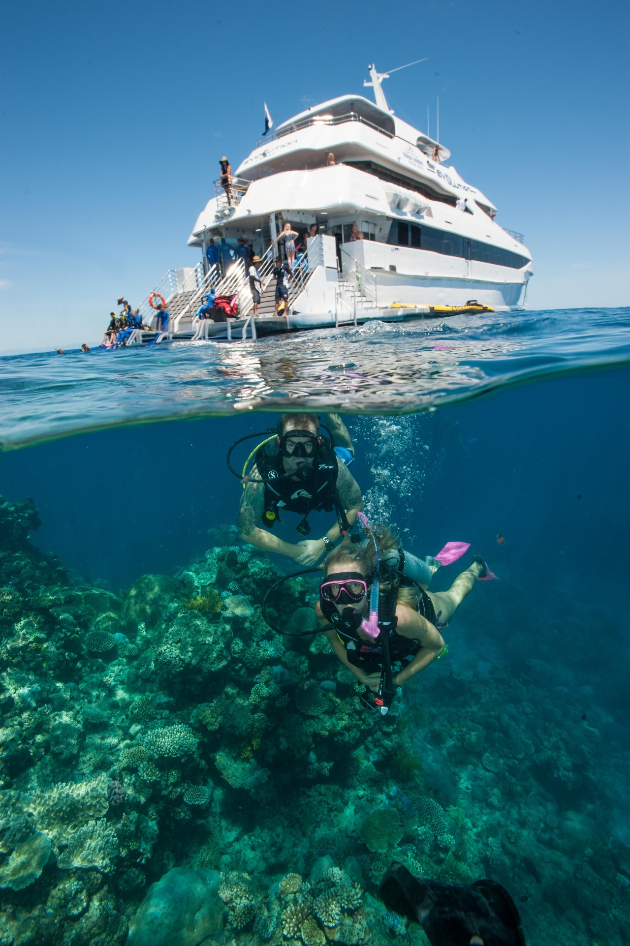 Great barrier reef tours cairns full or half day upgrade to helicopter package - Dive great barrier reef ...